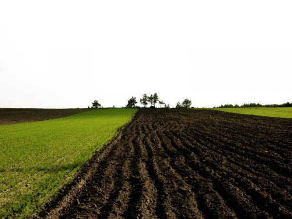 soils-and-agricultural-potential-assessment-specialists