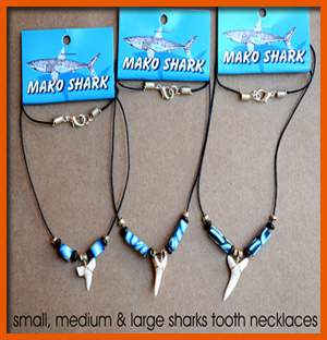 shark-tooth-necklace--small