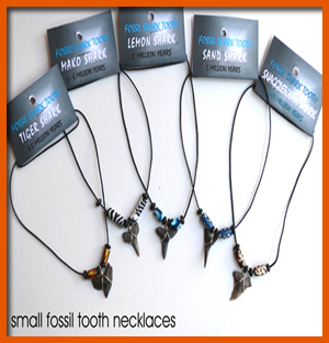 fossil-shark-tooth-necklace--small
