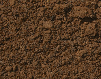 unsifted-top-soil