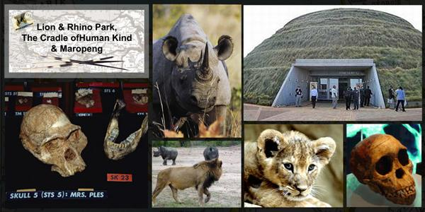 lion-&amp-rhino-park-cradle-of-humankind-&amp-maropeng